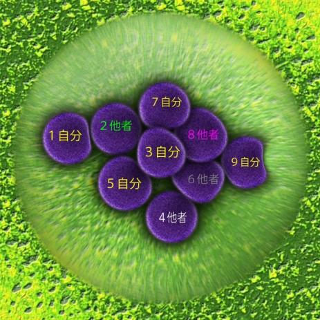 bacteria-108896_960_720a