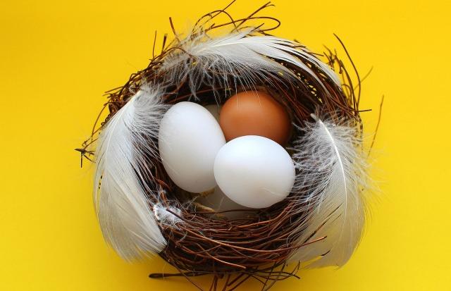 eggs-3152331_1280.jpg